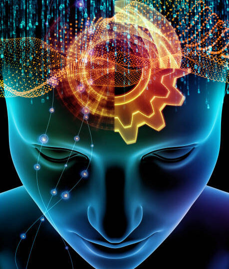1st ICBL Webinar – Lipids in Neuroscience