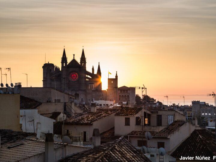 63rd ICBL:  2023 – Palma, Spain