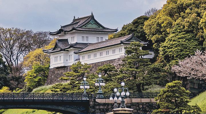 60th ICBL: 17-21 June 2019 – Tokyo, Japan